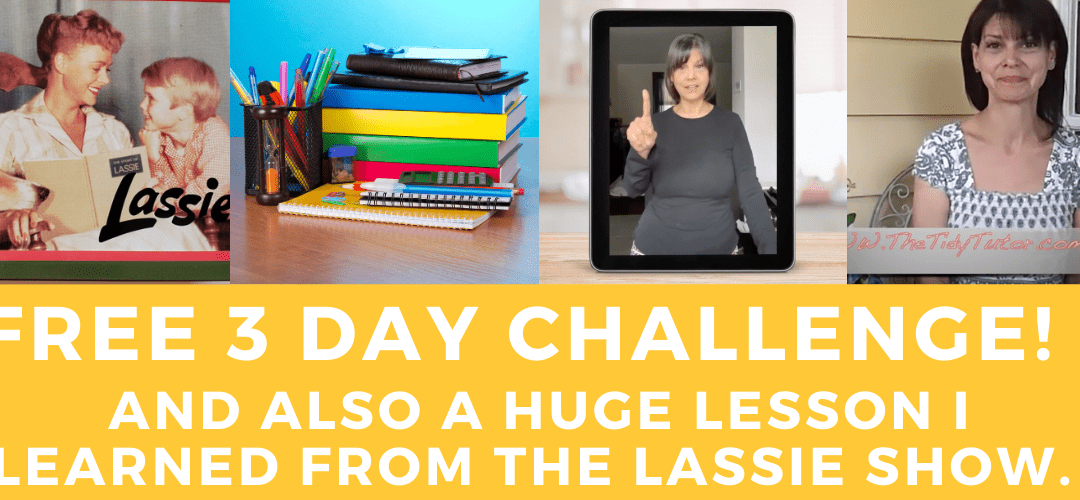 """Free 3 Day Challenge and """"A Place for Everything and Everything in it's Place"""""""